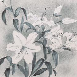Aonuma Ryo_1_The Flowers That I Like