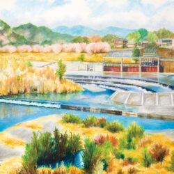Scenery of Tamagawa River