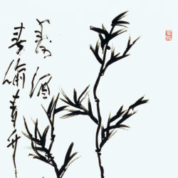 A Toast to Longevity (Poem by Wang Daokun)