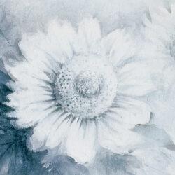 Sunflower -Hope-